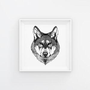 Wolf | Maitri Dalicha