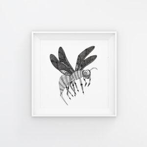 Bug Tales | Maitri Dalicha