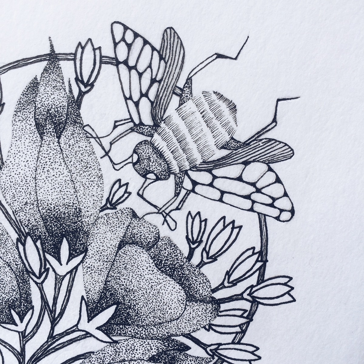 Alone and Blooming | Maitri Dalicha