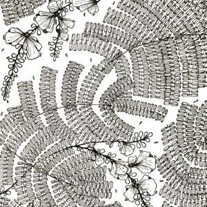 The yellow flower tree | Maitri Dalicha